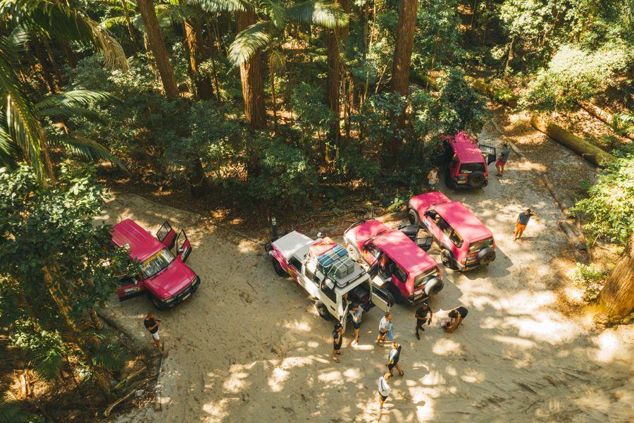 Fraser Dingo Tag Along Tours Fraser Island Pile Valley