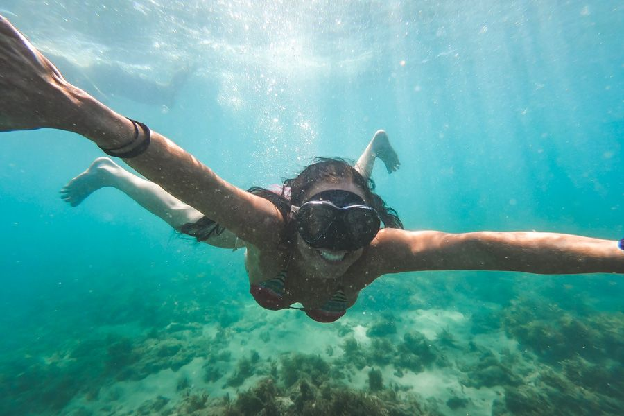 Snorkeling Horseshoe Bay Bowen Queensland
