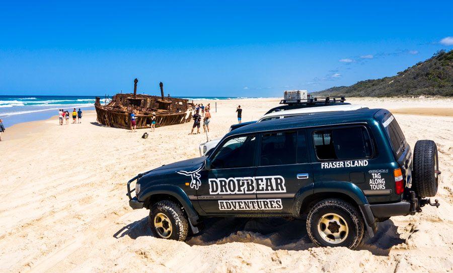 Drop Bears Tag-Along Tours, Fraser Island