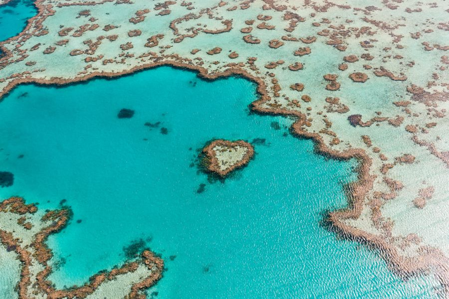 Heart Reef, Whitsundays, Great Barrier Reef Australia