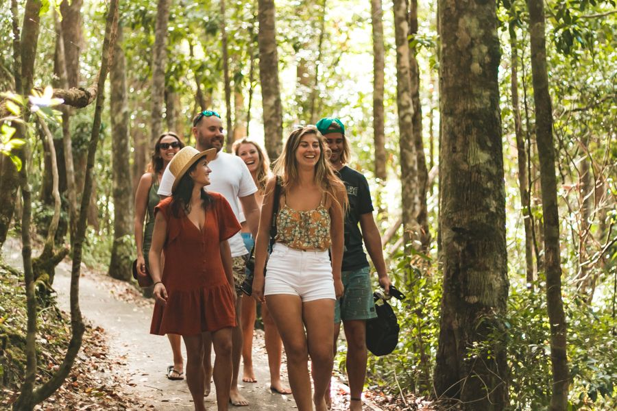 Rainforest, Fraser Island