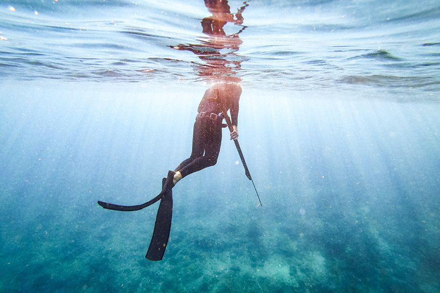 Man spearfishing, Australia
