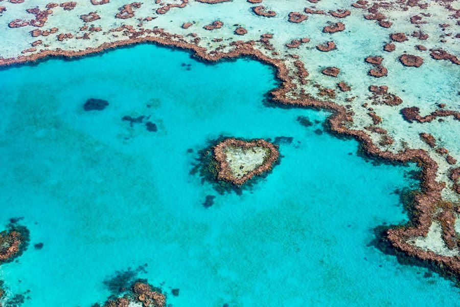Heart Reef, Whitsundays, Australia
