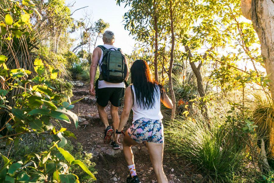 Lush rainforest track through Spion Kop Track, South Molle Island