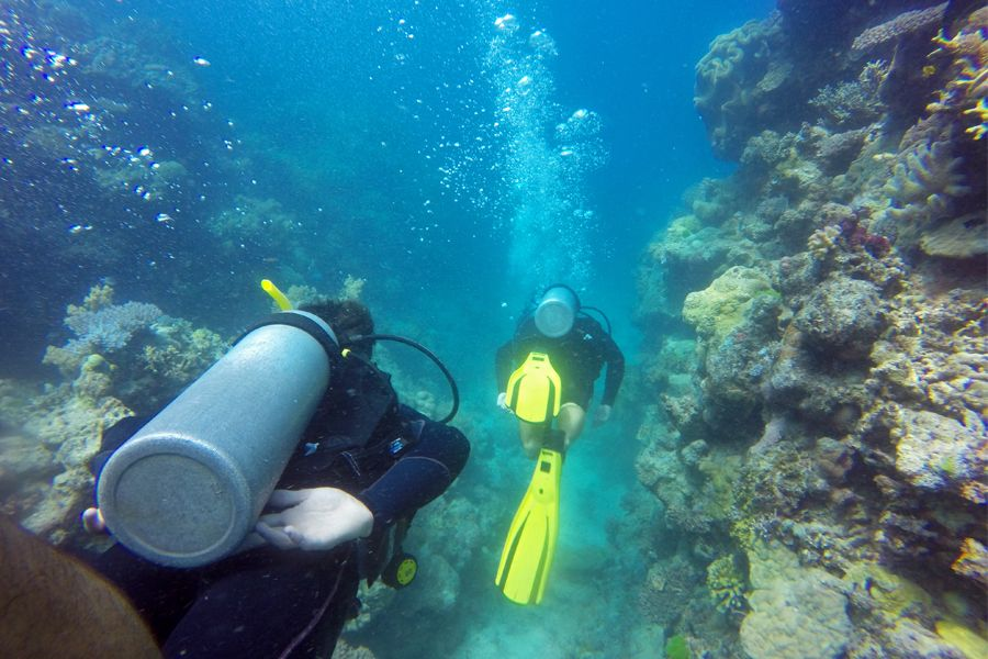 Scuba diving through the Great Barrier Reef, top 10 things to do