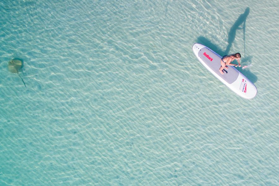 stand-up paddleboard SUP in Whitehaven Beach, Whitsunday Island