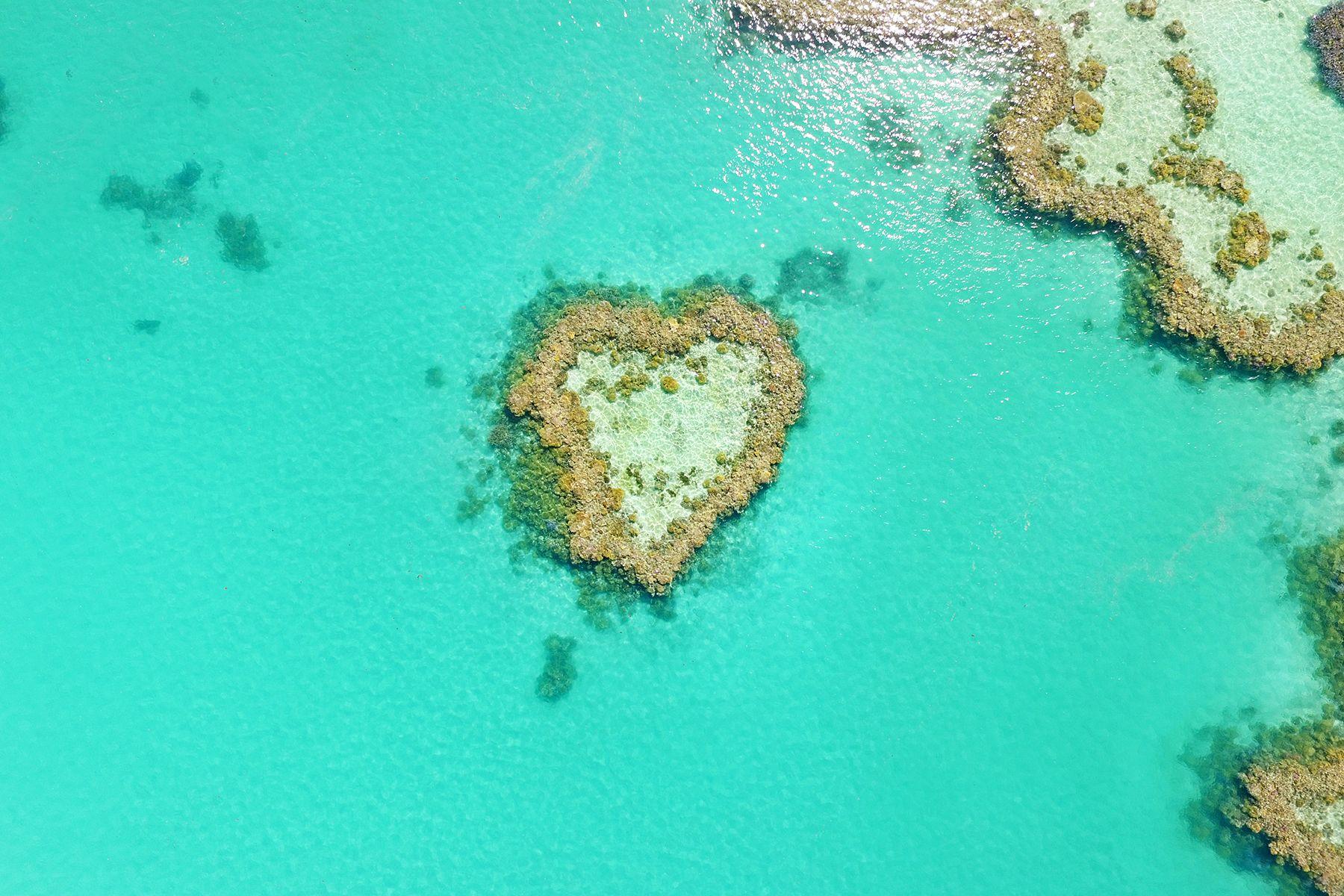 Heart Reef Scenic Flight, the Great Barrier Reef, GSL