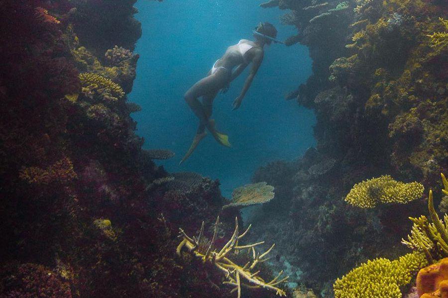 Cleo Cohen Instagram Snorkelling the Great Barrier Reef