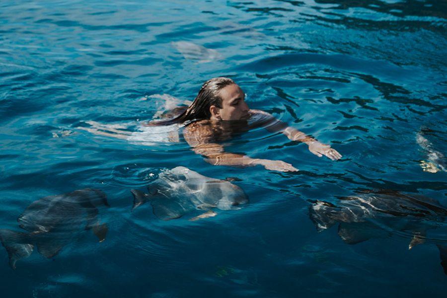 Mantaray Bay Whitsundays Tik Tok Swimming
