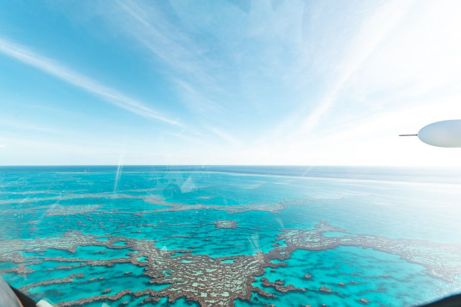 Great Barrier Reef largest ecosystem world facts