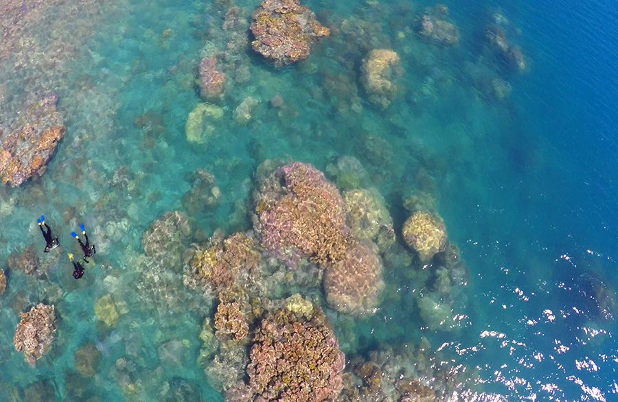Snorkellers at the Great Barrier Reef, Whitsundays, Australia