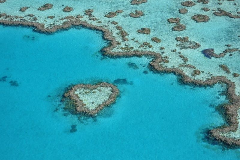 Heart Reef scenic flight Great Barrier Reef in the Whitsundays