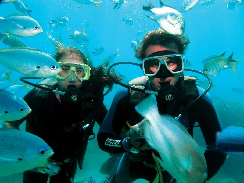 Scuba Dive combo packages Whitsundays budget Great Barrier Reef